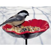 Poppy Bird Feeder - $13.97 (30% Off)
