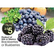 Blackberries or Blueberries - 2/$5.00